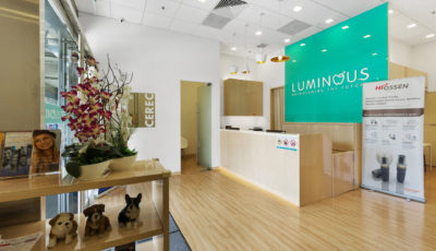 Luminous Dental Clinic @ Tampines Plaza 3D Model